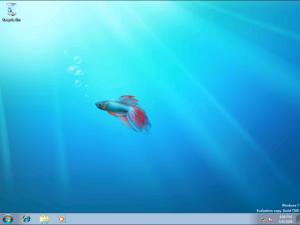 vista_desktop1